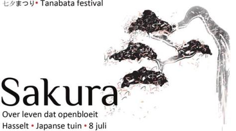 Sakura-Hasselt-Banner